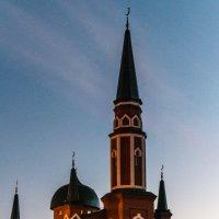Мечеть вечером :: Александр Ефименко