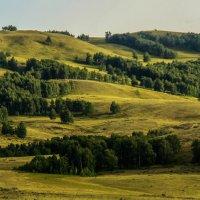 По дороге на Сибай :: Евгения Кузнецова