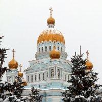 Кафедральный собор святого праведного воина Феодора Ушакова. Саранск :: Alexandr Shemetov