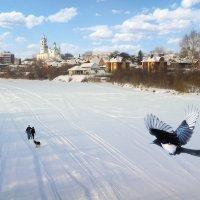 Зимний пейзаж :: Марина Корнова