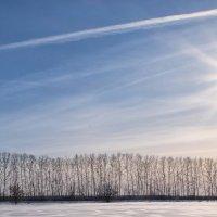 зимний день :: Dmitry i Mary S