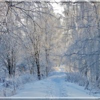 Зимняя сказка... :: Святец Вячеслав
