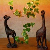 Жирафы :: Nina Yudicheva