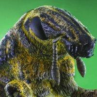 Портрет жука :: Денис Штейн