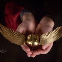 Золотой снитч :: Елизавета Ковылина