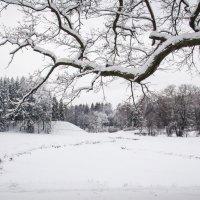 Долина Зимы :: Дмитрий Графов