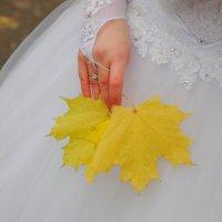 Свадьба дочери :: Александр Коликов