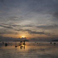 Рыбалка на восходе :: Нина Ковзель