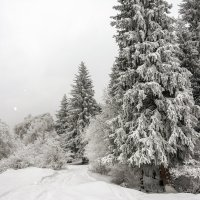 пейзаж :: Горный турист Иван Иванов