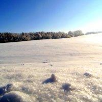 Мороз и солнце.....зима... :: Lilek Pogorelova