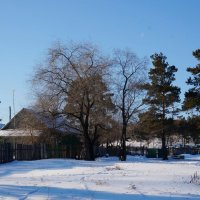 Зима в Глухарях 2 :: IURII