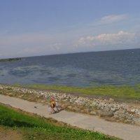 Финский залив :: Виктор Мухин