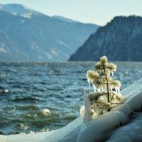 В ледяном плену... :: Татьяна Клименко