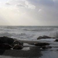 Море в солнце :: NatWolf