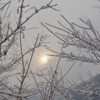 Зимнее солнце, волшебное солнце... :: Anna Gornostayeva