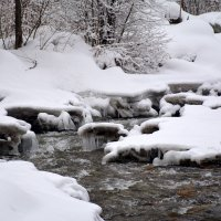 Опять зима…  Из красок акварельных - только белый. :: Anna Gornostayeva