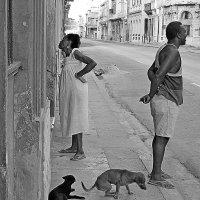 Полдень в Гаване :: Григорий Кучушев