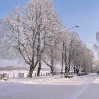 Январское солнце :: Alexandr Яковлев