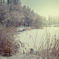 Зимняя :: Yulia Demina