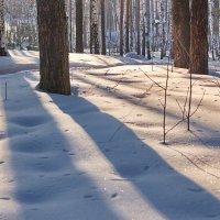 зимний пейзаж :: Евгений