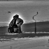 рыбак :: Сергей Цветков