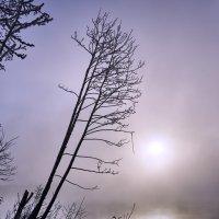 Над солнцем :: Михаил Бабаков