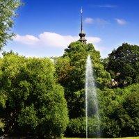 Дрезден (в парке) :: Олег Неугодников