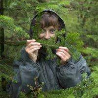 Сказки темного леса :: Константин Огнев