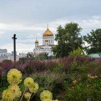 Вид на храм Христа Спасителя :: Татьяна Бронзова