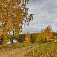Октябрь. :: Валера39 Василевский.