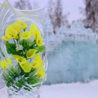 Цветы Февраля... :: MoskalenkoYP .