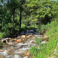 Река :: Анастасия Фадеева
