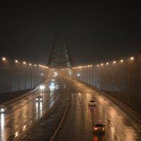 Дождь :: Евгения Латунская