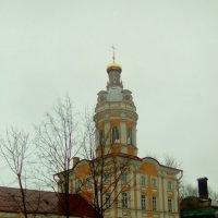 Февральский снимок Александра-Невской Лавры. :: Светлана Калмыкова