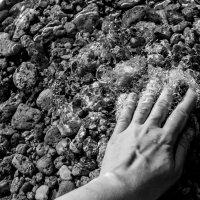 #Sevastopol :: Света Гончарова