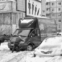 ...срочная бесплатная... :: Ольга Нарышкова