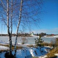 Вполне весенняя погодка в феврале,солнечно и бегут ручьи)) :: Алексей