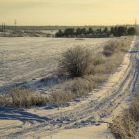 Зимние поля :: Aнна Зарубина