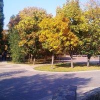 осень :: Евгения Eva