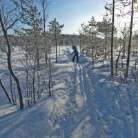 На лыжне :: Анатолий