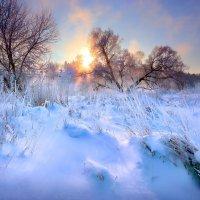 Просто морозный рассвет...2 :: Андрей Войцехов