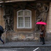 Спрятались от дождя :: Татьяна [Sumtime]
