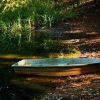 Заброшенный пруд :: Alena Karpova