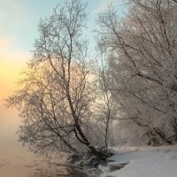 Утро туманное :: Флюра Дудина