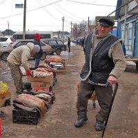 Рыбный день   серия3\\5 :: Николай Сапегин