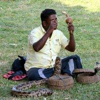 Заклинатель змей (сфотографируйтесь) :: Асылбек Айманов