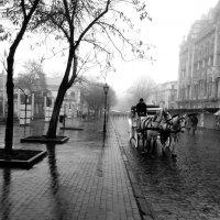 Одесса :: оксана косатенко
