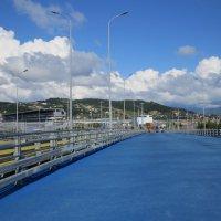 Дорога в Олимпийском парке :: Вера Щукина