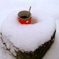 Экскурсия в Гадюкино зимой (24) :: Александр Резуненко