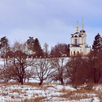 Прогулки за городом :: Андрей Куприянов